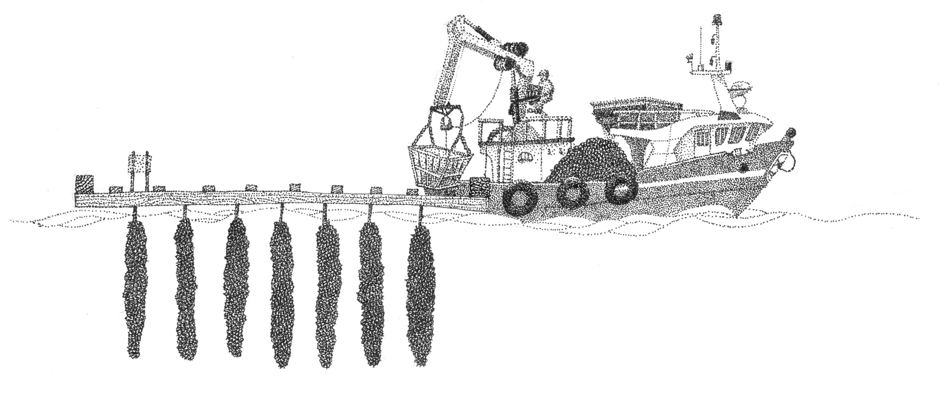 Ilustración barco en bateas
