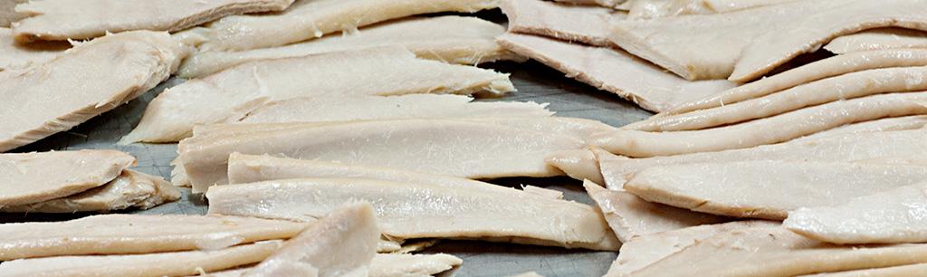 Láminas de ventresca de atún